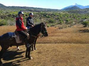 teneriffa-reiten-pferde
